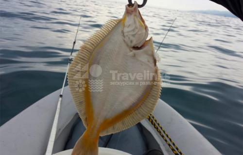 VIP-рыбалка в Анапе